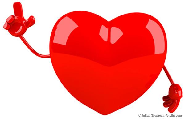 Unser Herz braucht gute Unterstützung durch die Organe